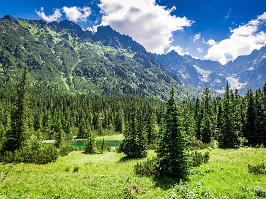 Czego nie wiesz o polskich górach