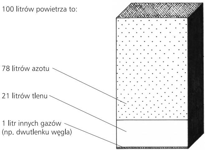 Skład powietrza