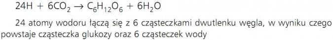 Fotosynteza. 24H + 6CO2 = C6H12O6 + 6H2O. 24 atomy wodoru łączą się z 6 cząsteczkami dwutlenku węgla, w wyniku czego powstaje cząsteczka glukozy oraz 6 cząsteczek wody.