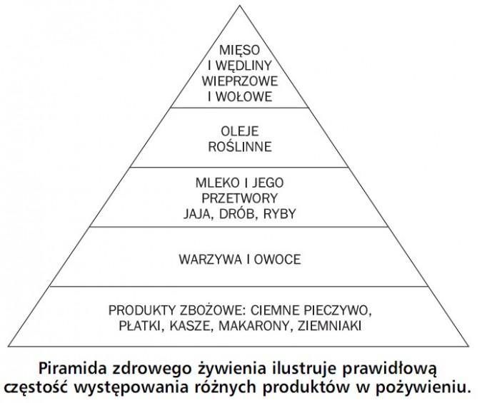 Piramida zdrowego żywienia ilustruje prawidłową częstość występowania różnych produktów w pożywieniu. Mięso i wędliny wieprzowe i wołowe; oleje roślinne; mleko i jego przetwory, jaja, drób, ryby; warzywa i owoce; produkty zbożowe: ciemne pieczywo, płatki, kasze, makarony, ziemniaki.