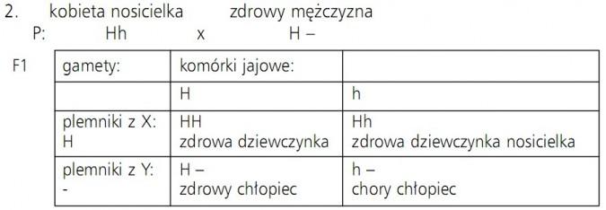 Krzyżówka ilustrująca zasady dziedziczenia hemofilii. Gamety, komórki jajowe, plemniki, zdrowa dziewczynka, zdrowa dziewczynka nosicielka, zdrowy chłopiec, chory chłopiec.