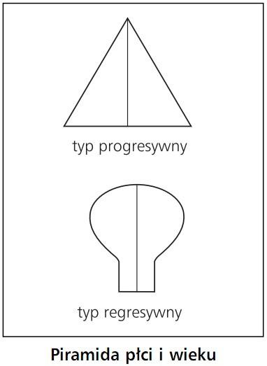 Piramida płci i wieku. Typ progresywny, typ regresywny.