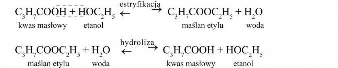 Wzory niektórych estrów. Kwas masłowy, etanol, maślan etylu, woda. Estryfikacja, hydroliza.