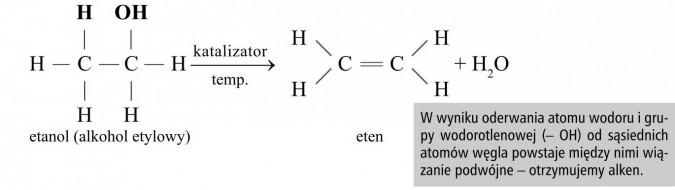 W wyniku oderwania atomu wodoru i grupy wodorotlenowej (- OH) od sąsiednich atomów węgla powstaje między nimi wiązanie podwójne - otrzymujemy alken.